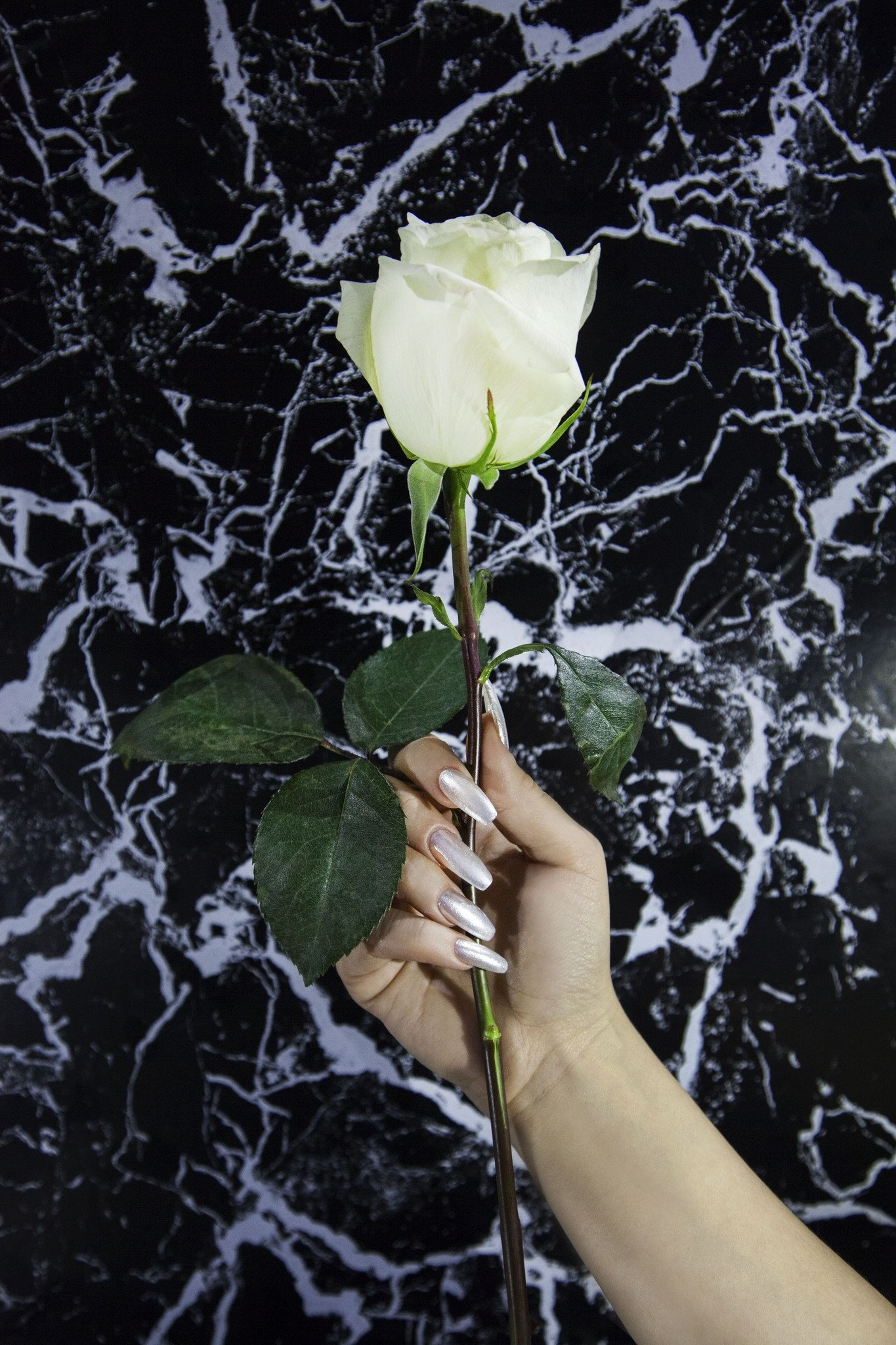 Floss Gloss 1080 Pearl, Opaque White Creme