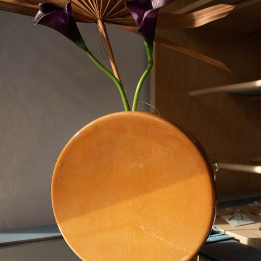 Matagalan Plantae Full Moon, 21 cm height,
