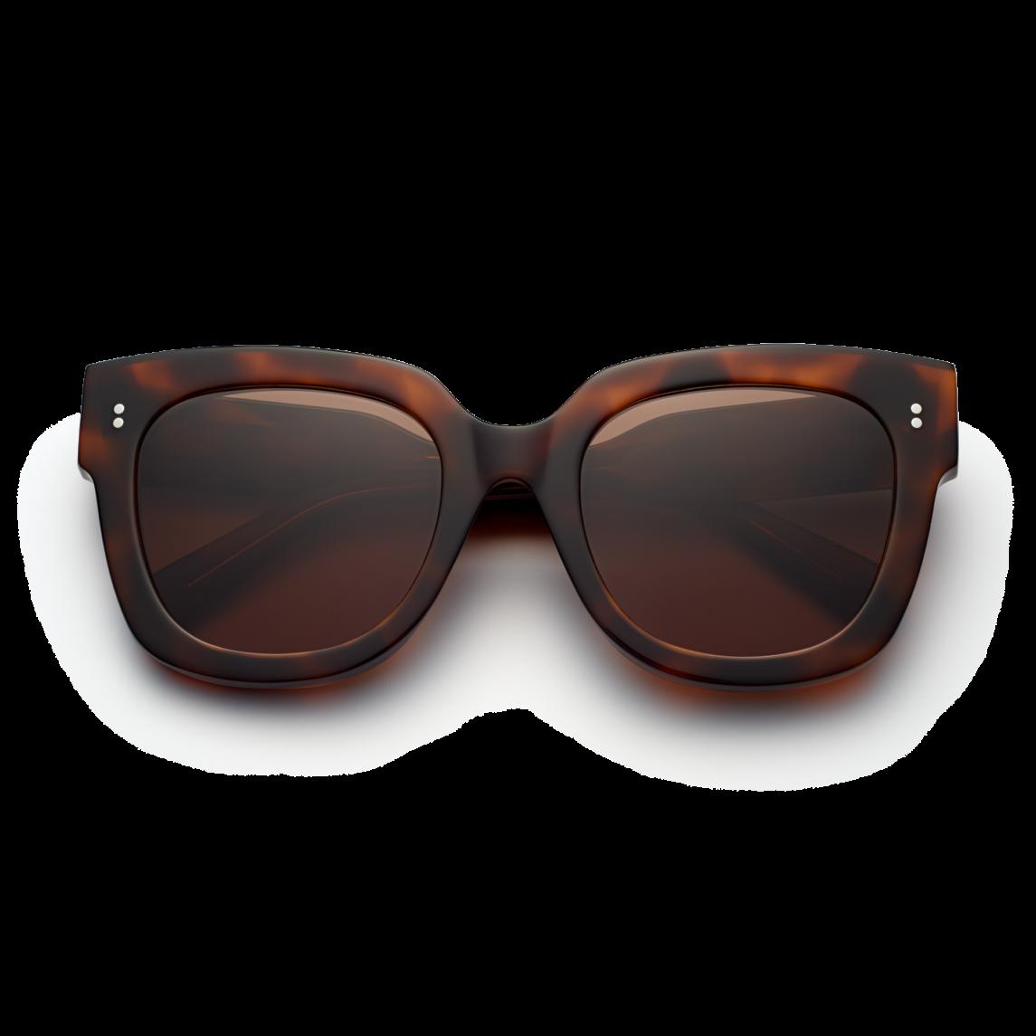Chimi Tortoise #008 Sunglasses with Black Lenses