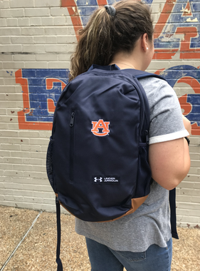 Under Armour Under Armour Roland Backpack, Navy