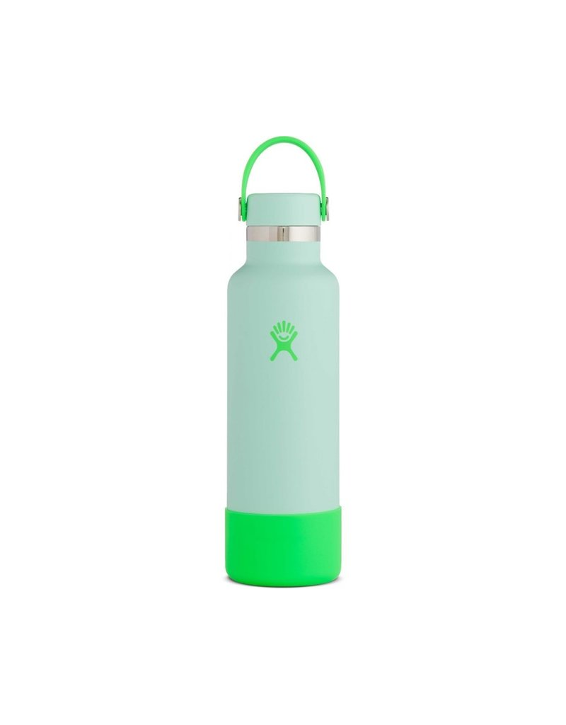Hydro Flask Hydro Flask 21 oz. Standard Mouth Bottle
