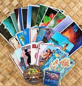 The Most Irresistible Shop in Hilo Surprise! Hawaii Postcard Souvenir Set
