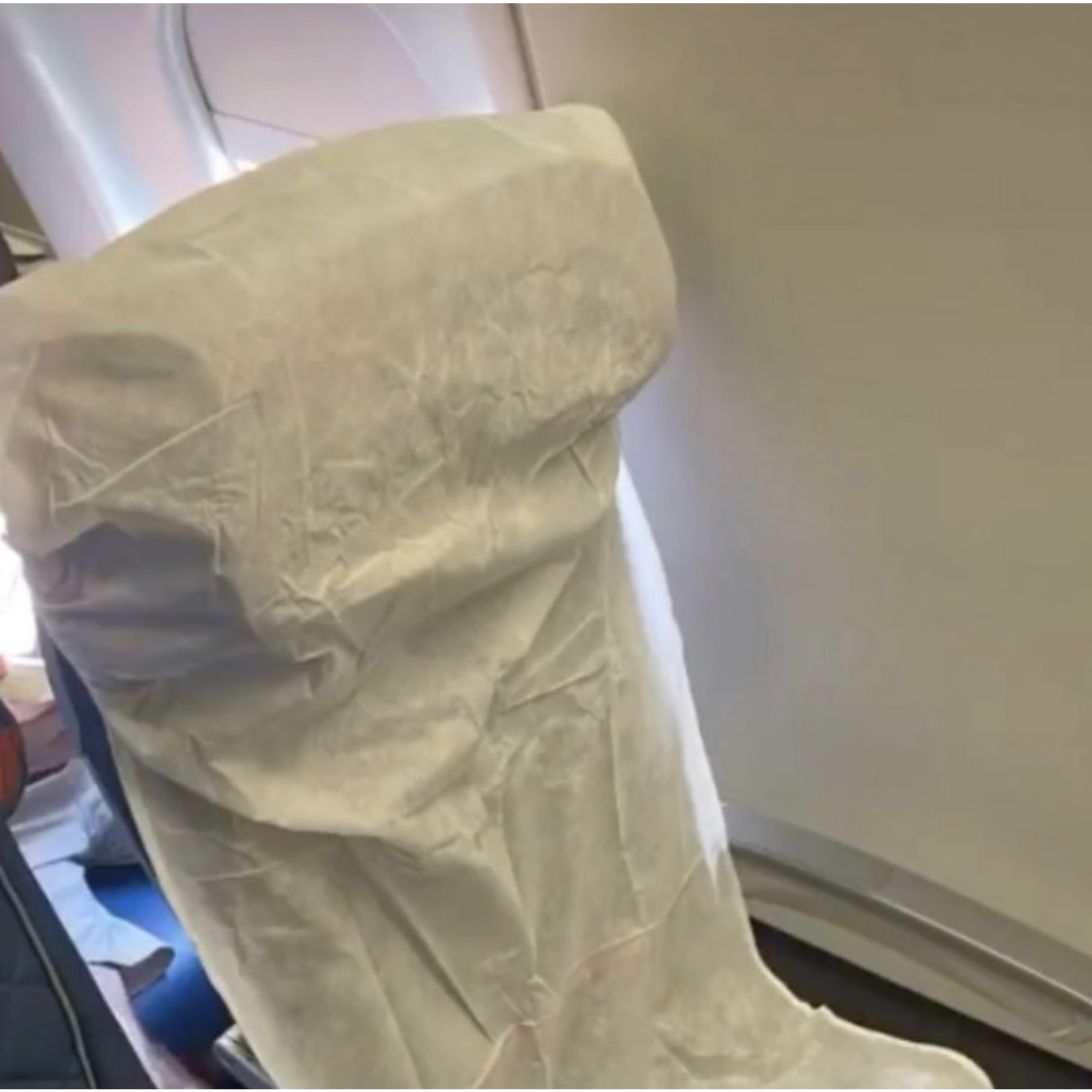 Disposable Airplane Seat Covers (2ct)