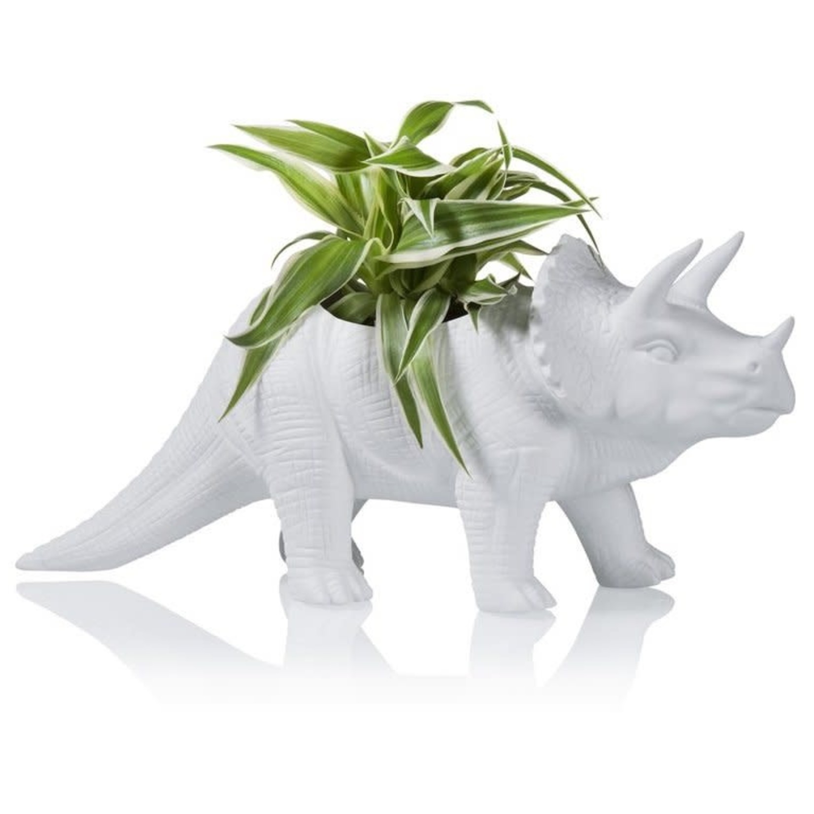 Kikkerland TRICERAPOT porcelain planter