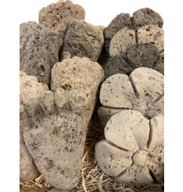 The Most Irresistible Shop in Hilo Pumice Stone: