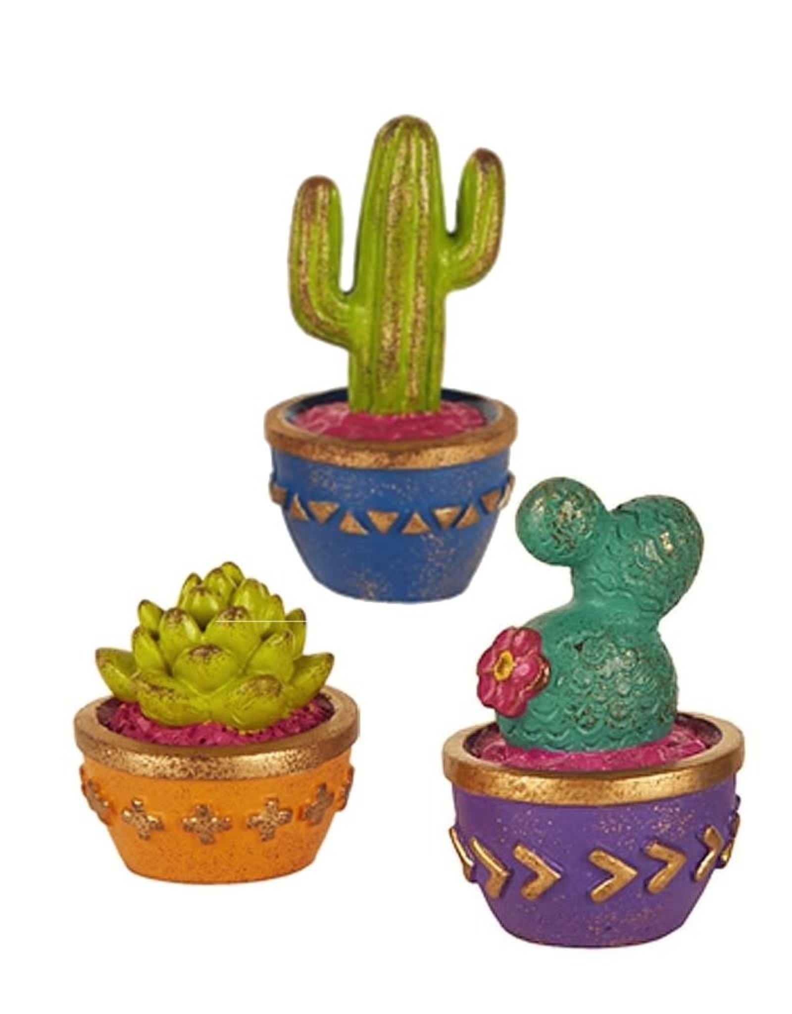 Studio M Mini Cacti Set/3 Asst