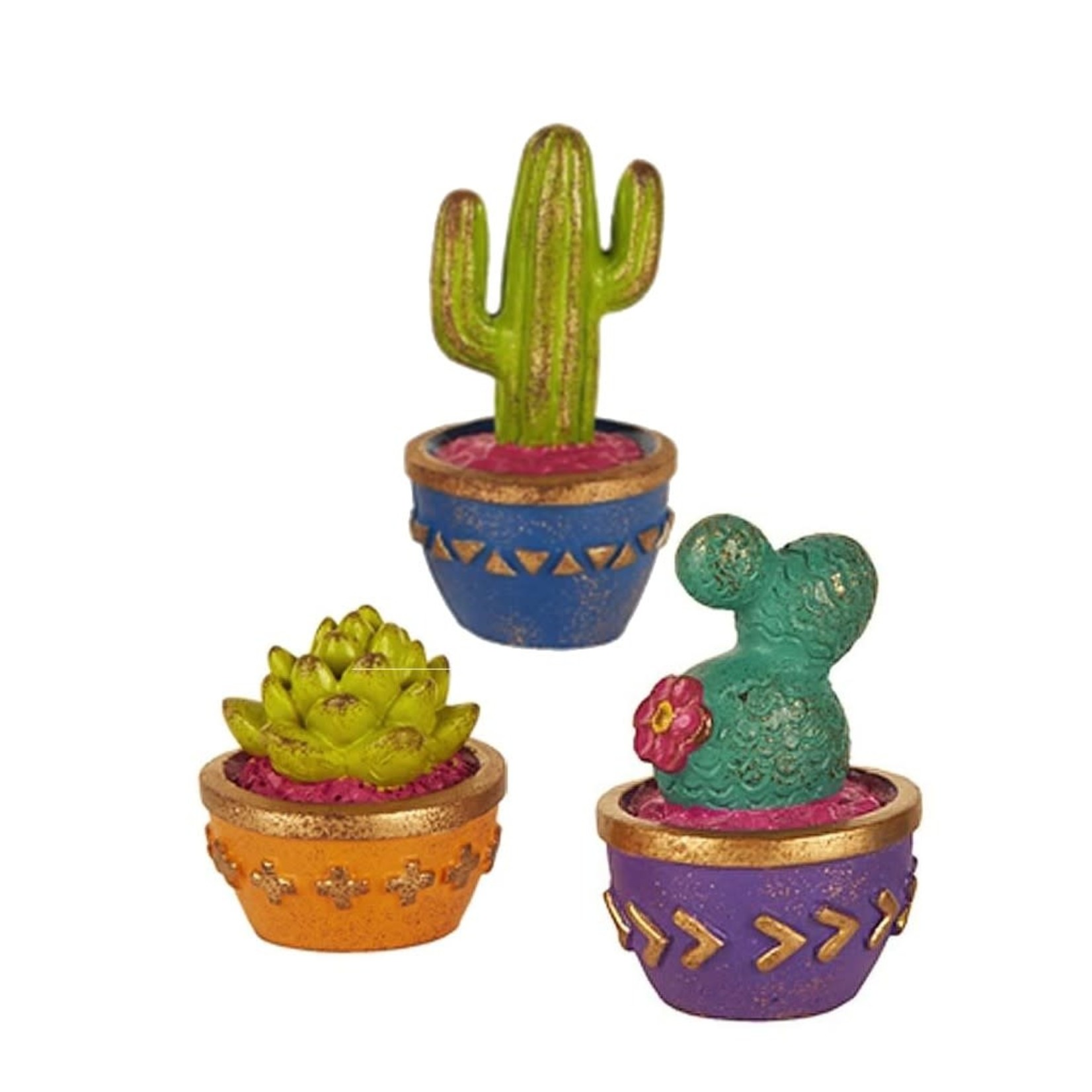 Studio M Mini Cacti Set/3 Asst
