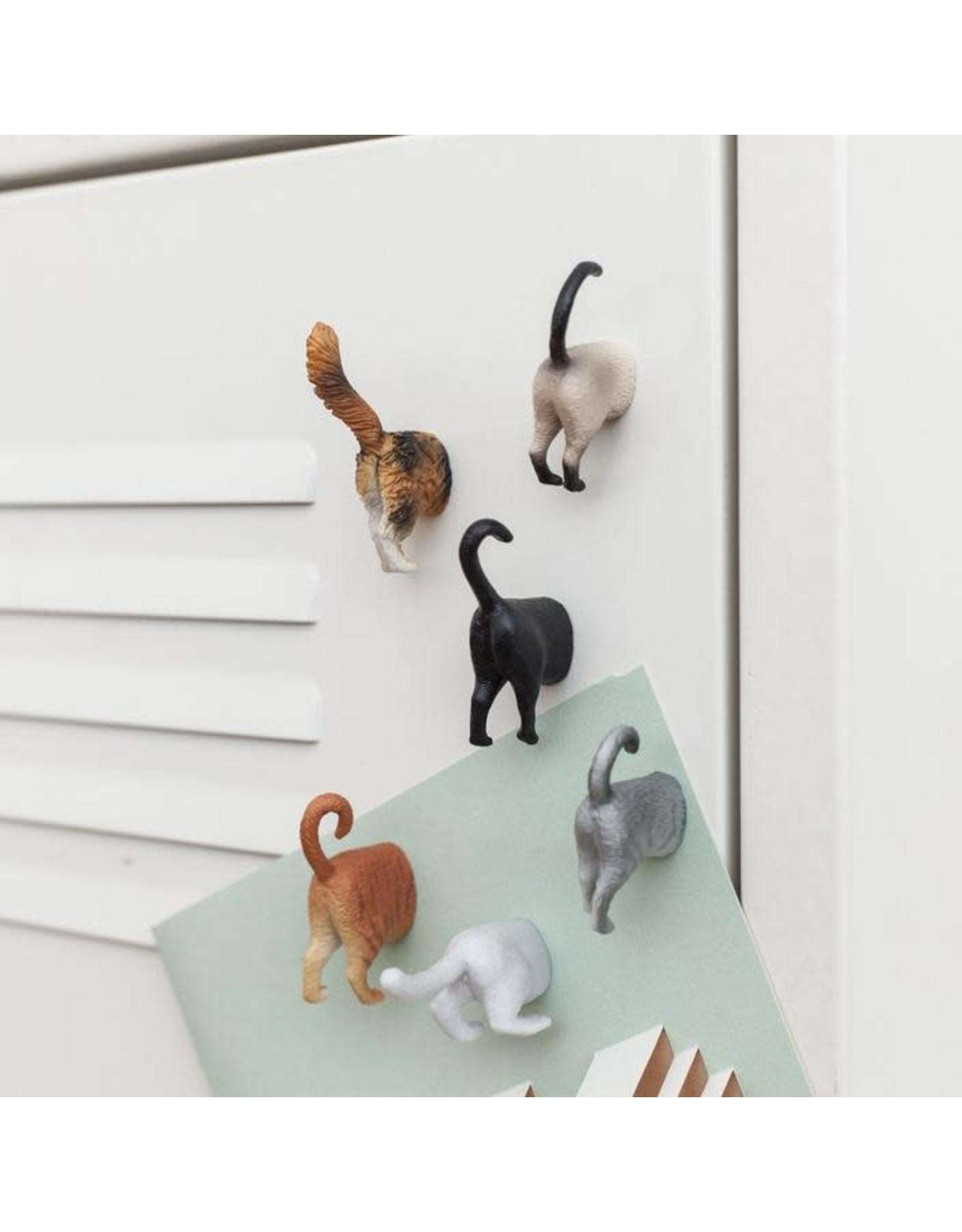 Kikkerland Butt Magnets Cat Set of 6