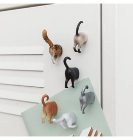 Kikkerland Butt Magnets Cat Set of 6