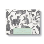 Compendium Note Cards - 12 Note Cards for Appreciation and Friendship