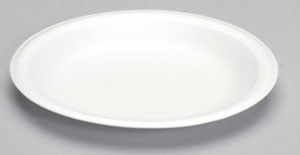"Genpak Plates, 9"" Genpak White Foam Dinner Plate 4/125ct. Case"