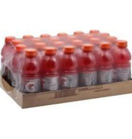 Gatorade Gatorade Fruit Punch, 24/20oz. Case