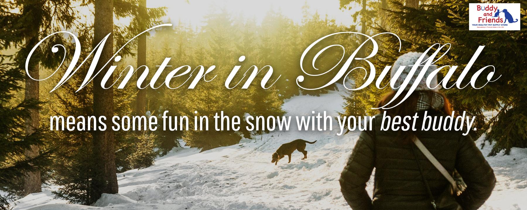 winter in buffalo