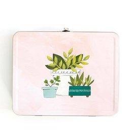 1Canoe2 House Plants Small Tin Box