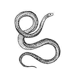 Tattly Tattoo, Serpent