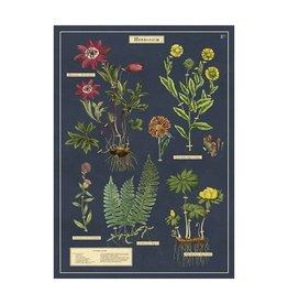 Cavallini Papers Herbarium Wrap Sheet