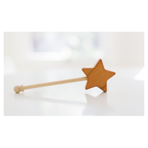 Bannor Toys Star Wand