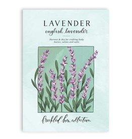 1Canoe2 Lavender Seed