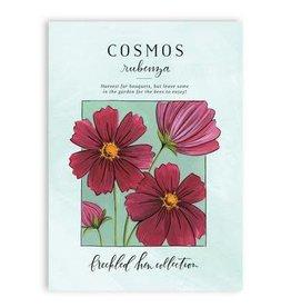 1Canoe2 Cosmos Seed