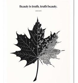 Obvious State Leaf Print, 11x14