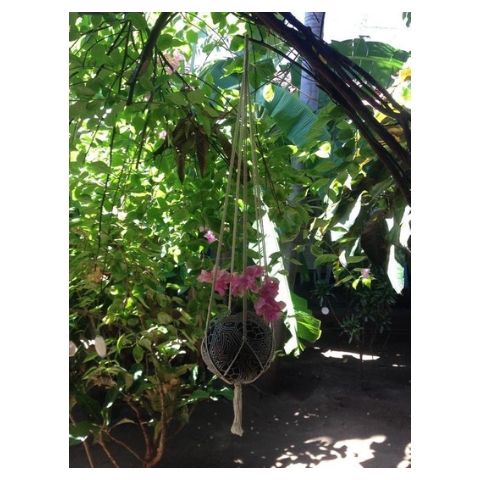 Mission Hammocks Hanging Planter