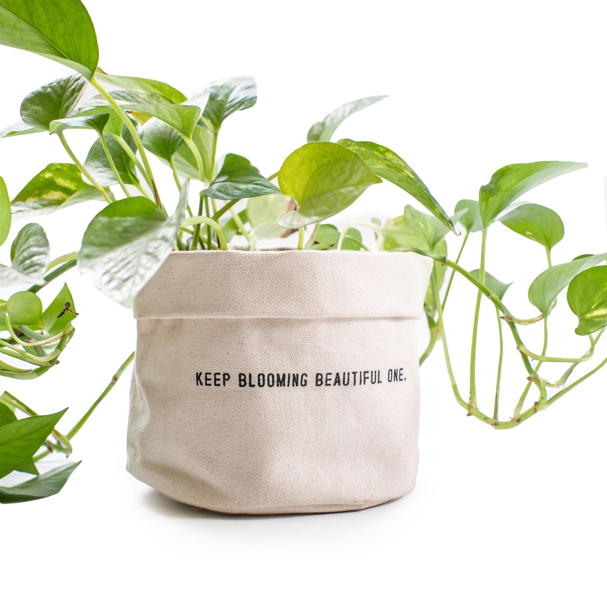 SugarBoo Designs Keep Blooming Canvas Planter, Lg