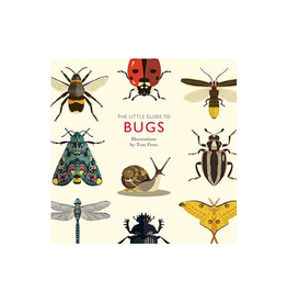 Hachette Book Group Little Guide to Bugs