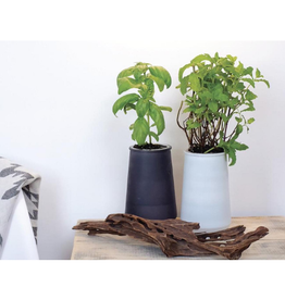 Modern Sprout White Planter, Mint