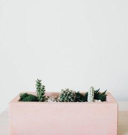 Concrete Days Pink Rectangular Planter