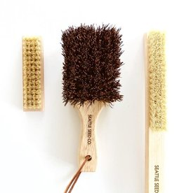 Seattle Seed Co. Vegetable & Nail Brush