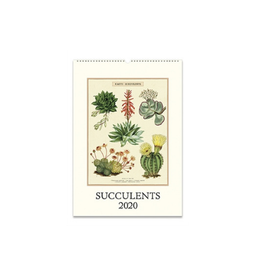 Cavallini Papers 2020 Succulents Wall Calendar