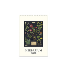 Cavallini Papers 2020 Herbarium Wall Calendar