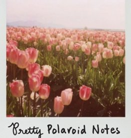Hachette Book Group Pretty Polaroids Notecards