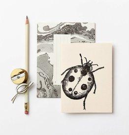 Katie Leamon Petit Ladybird