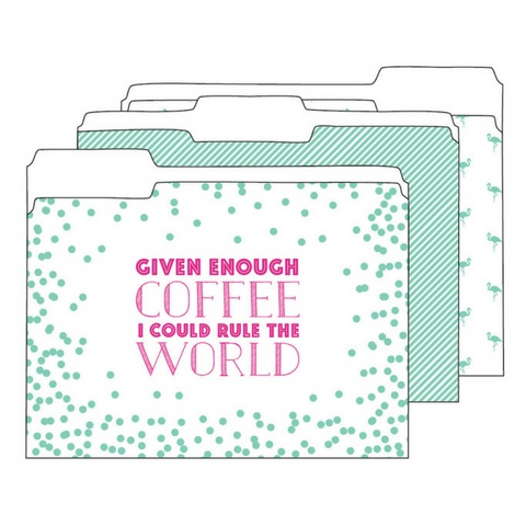 Ann Page Mint and Hot Pink File Folders