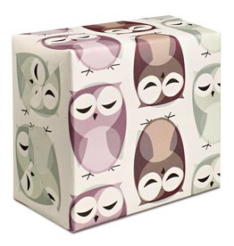 Pleased to Meet Owls Wrapping Paper