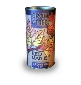 Jonsteen Red Maple Grow Kit