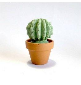 Tularoo Soaps Tul - Cactus Soap/A