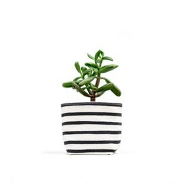 Gray Green Goods Black Stripe Canvas Planter