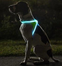 NoxGear NoxGear Lighthound Harness