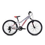 Fuji Bike Fuji Dynamite Sport 24 Silver