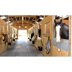 Stable Supplies & Equipment