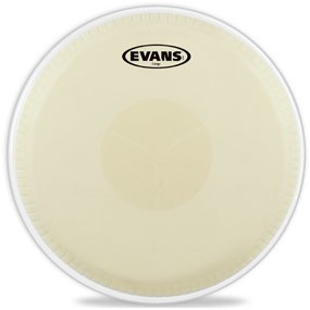 Evans Evans Conga Head 11.75in