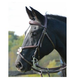 HDR PRO HDR Pro Fancy Stitched Figure 8 Bridle FULL