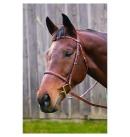 HDR ADVANTAGE HDR Advantage Plain Raised Bridle