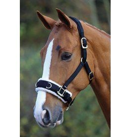 SHIRES Shires Fleece Lined Nylon Lunging Cavesson
