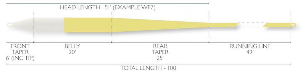 Airflo Airflo Ridge Clear Tip Tropical Short Fly Line