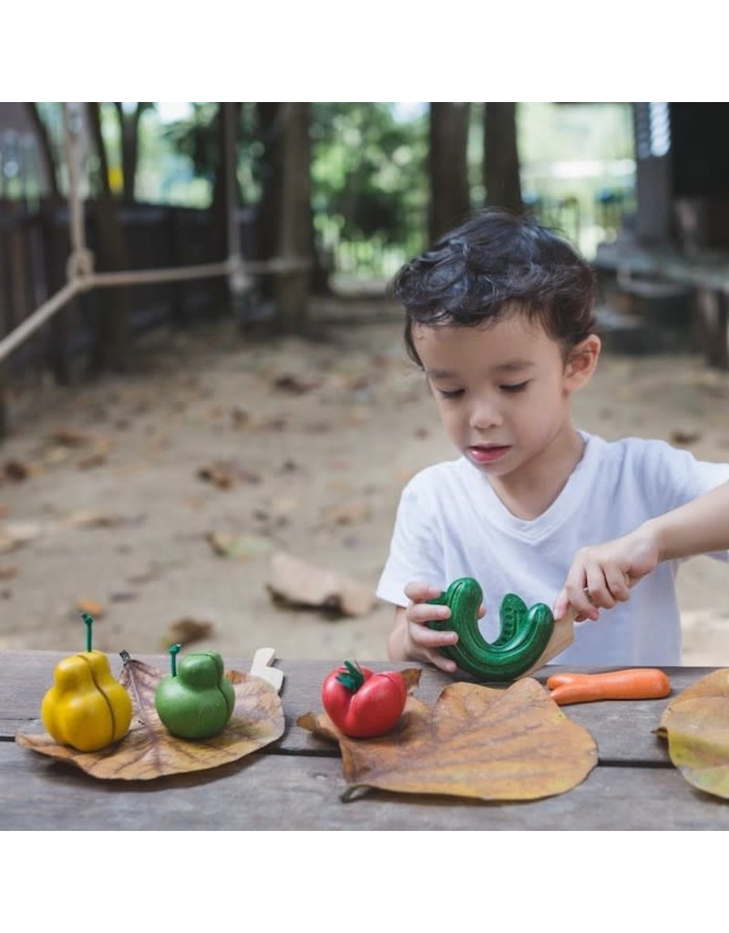 Plan Toys, Inc. Plan Toys Wonky Fruit & Vegetables