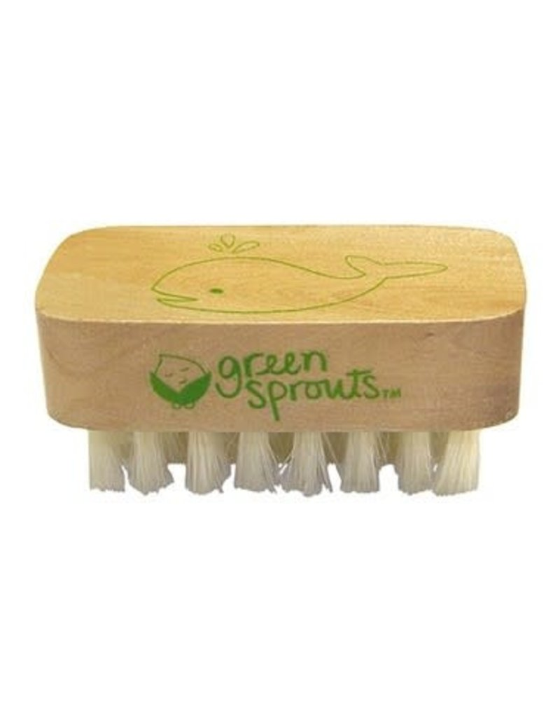 Green Sprouts Green Sprouts Baby Nail Brush