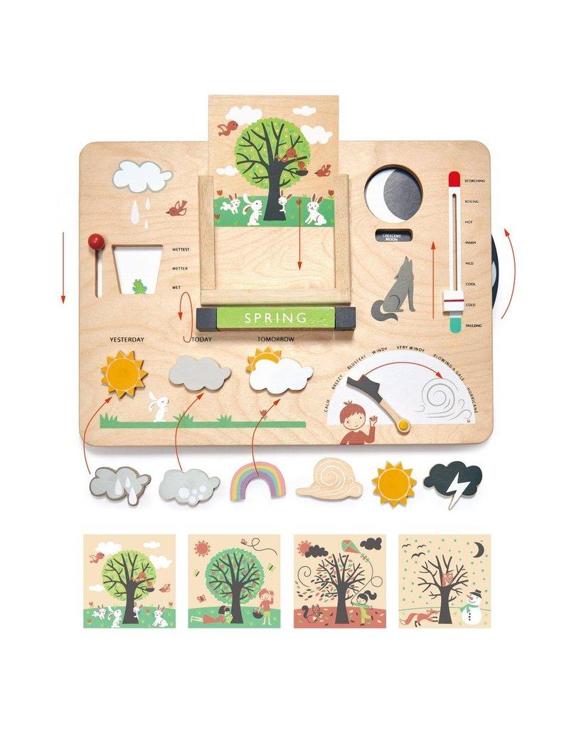 Tender Leaf Toys Tender Leaf Toys - Weather Watch